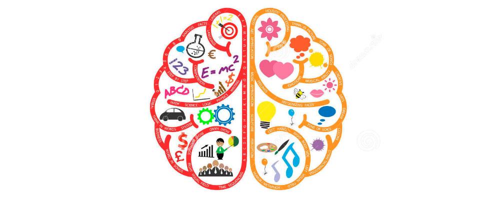 Linker rechter hersenhelft
